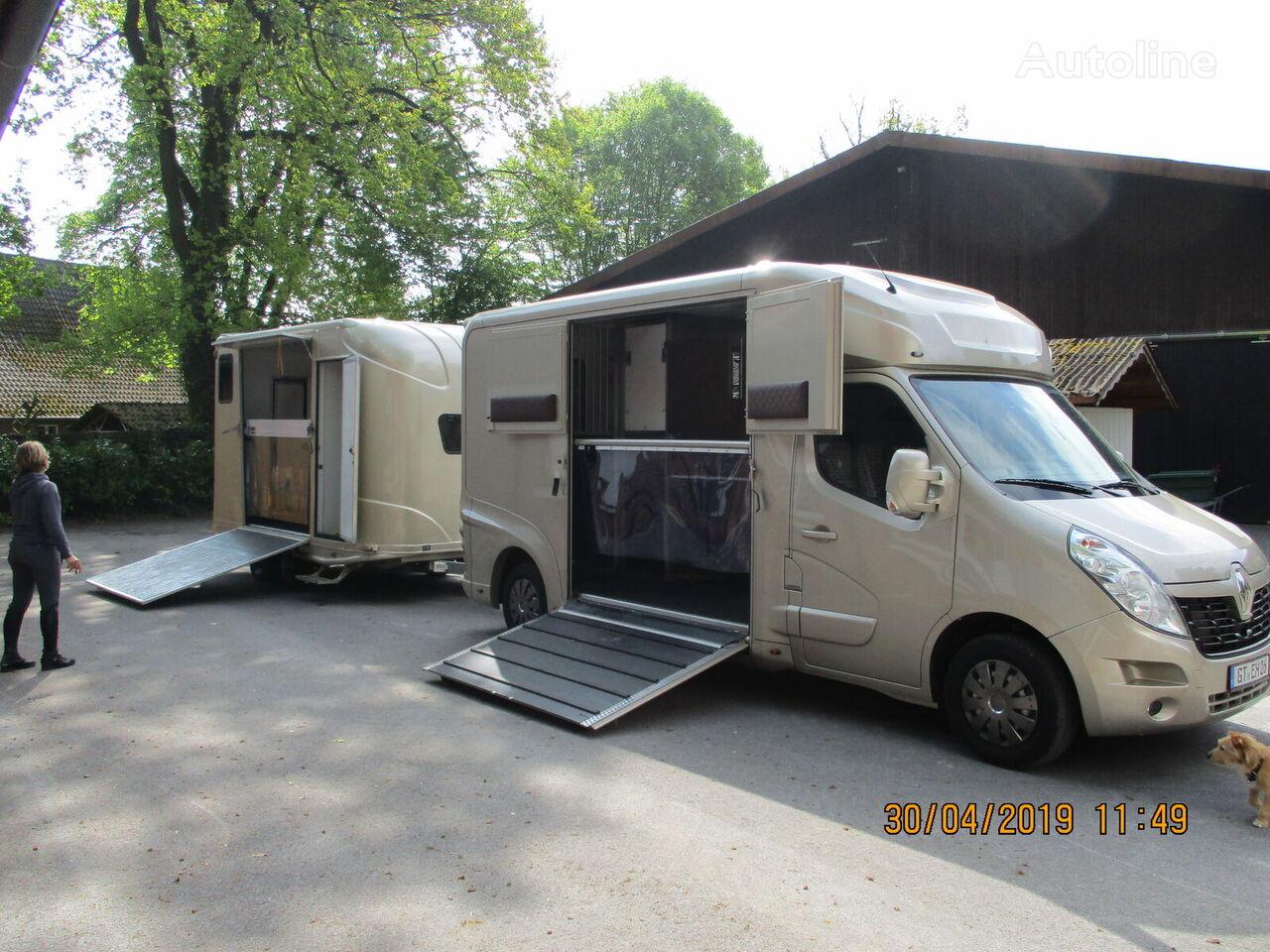ny RENAULT Master hestetransport