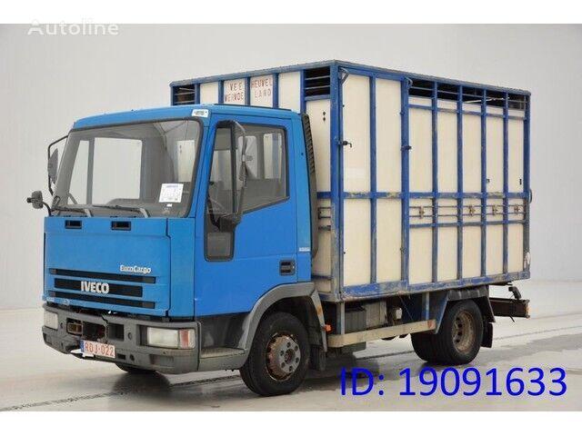 IVECO 65E14 dyretransport lastebil