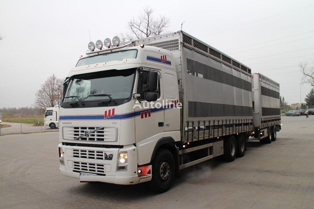 VOLVO FH12.480 6x4 forteltet lastebil + gardintrailer
